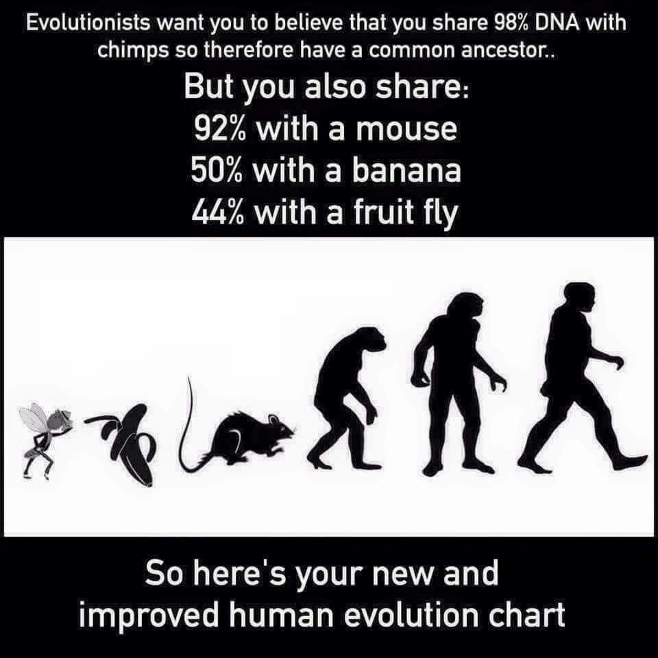 evolution theory was made up by the elite darwin was one