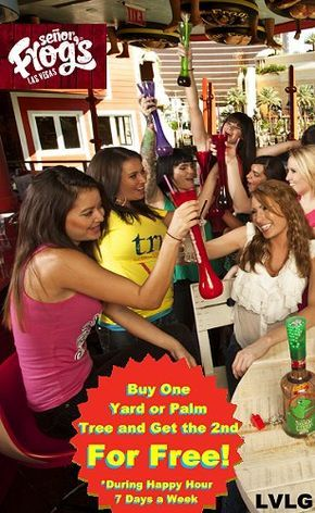 Coupon for buy one get one free yard or palm tree at Senor ...