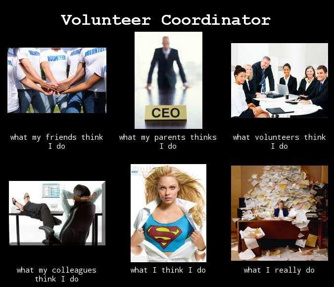 Funny Appreciation Meme : Volunteercoordinator initlive volunteer management