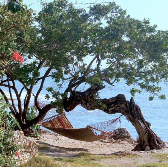 hammock at Jakes on Treasure Beach, Jamaica, WI - real authentic Jamaica