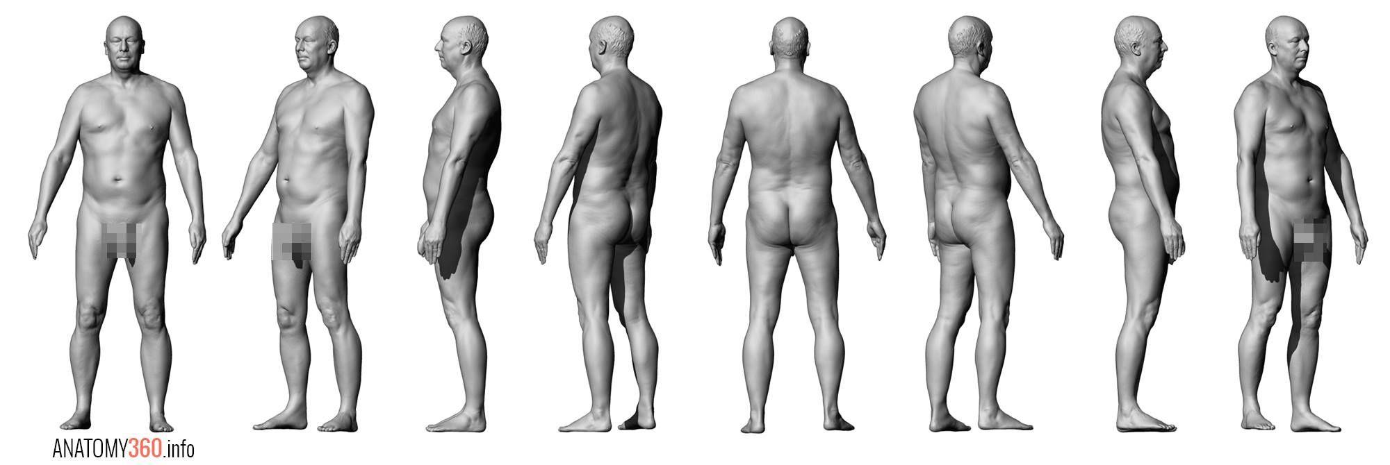 Pin by Damián Bonani on Art | 3D Model Anatomy360.info | Pinterest ...
