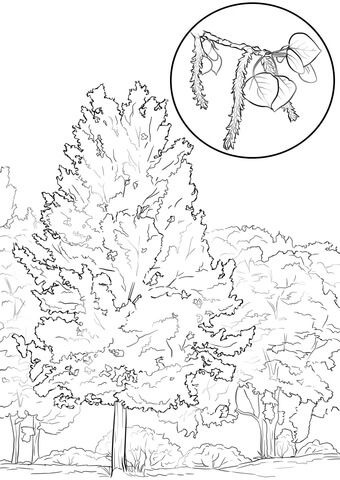 Utah State Coloring Page Coloring Pages Doodle Coloring