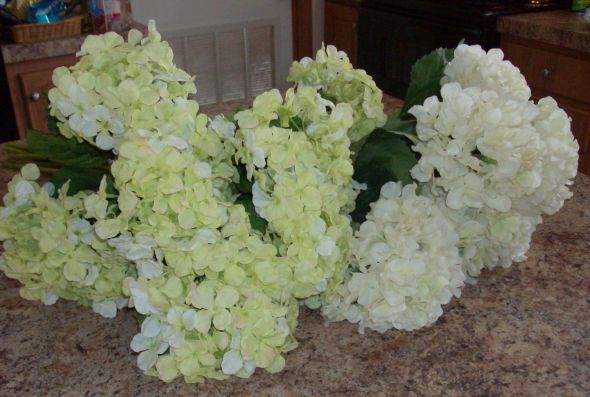 I love these for weddings, but I just love Hydrangea's!!