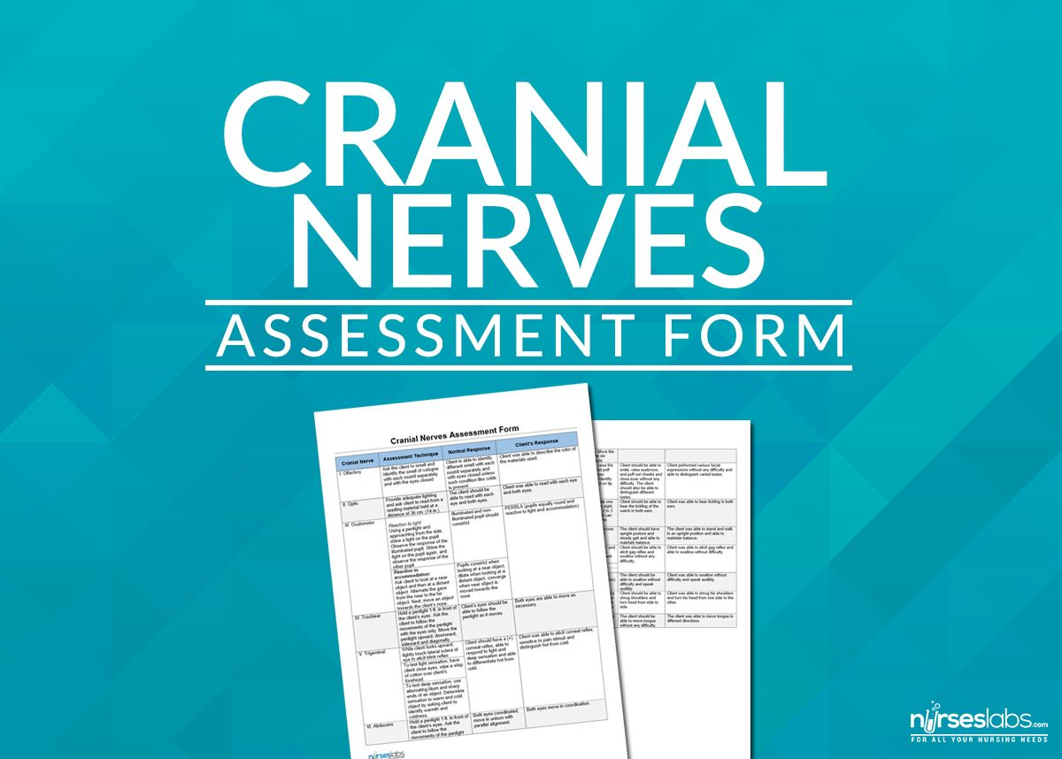 Cranial Nerves Assessment Form  Free Printable Form To Help You