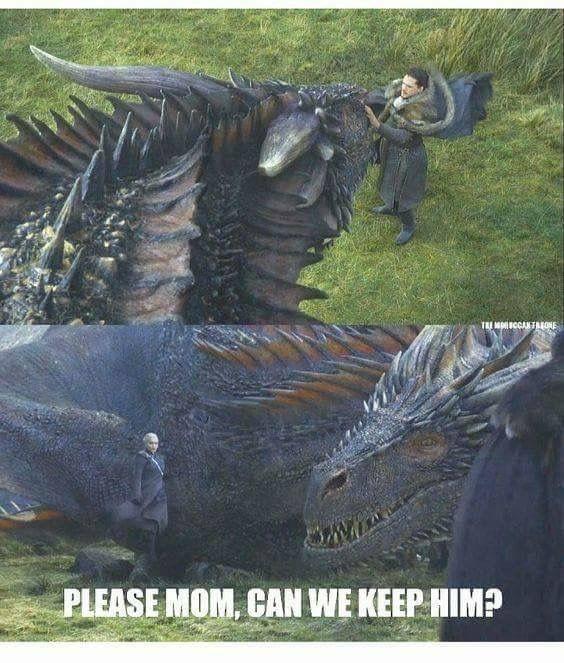 Game Of Thrones Games Of Thrones Juego De Tronos Memes Drogon