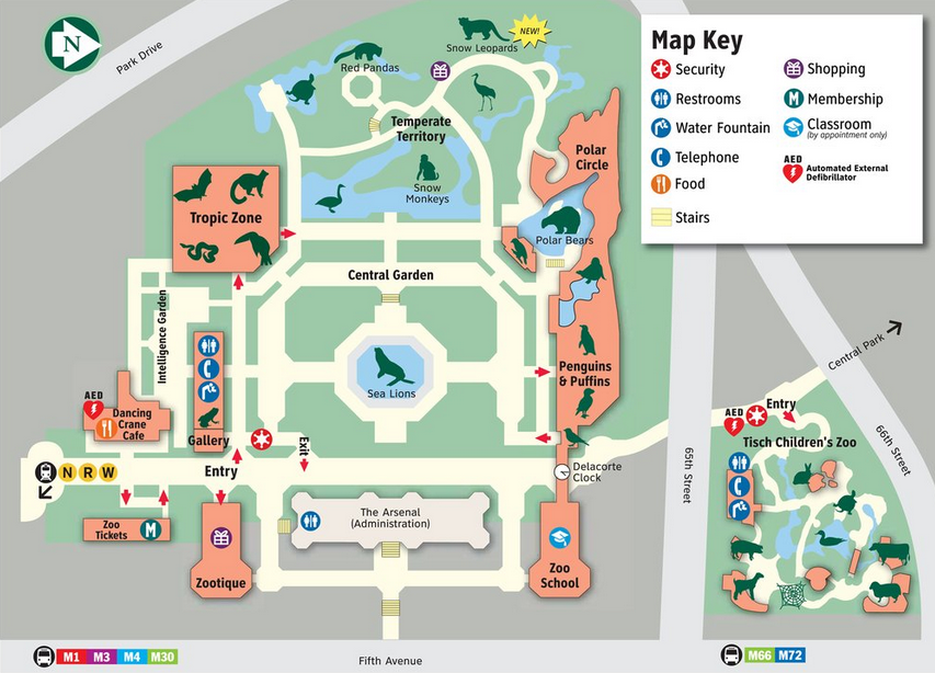Central Park Zoo Map Map of the Central park zoo | Central Park Maps | Zoo map, Central