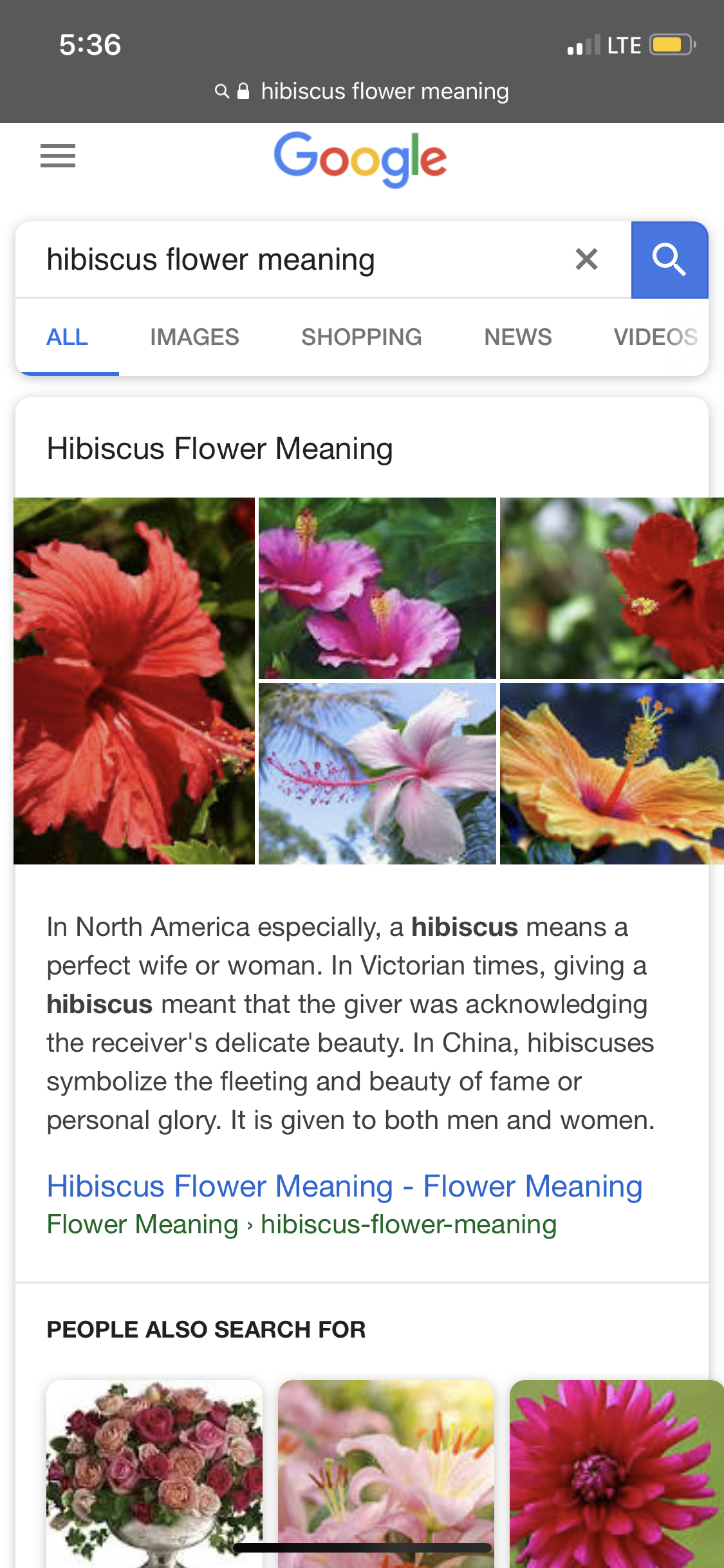 Pin By Rachel Klement On Tattoo Ideas Hibiscus Flower Meaning Flower Meanings Hibiscus Flowers