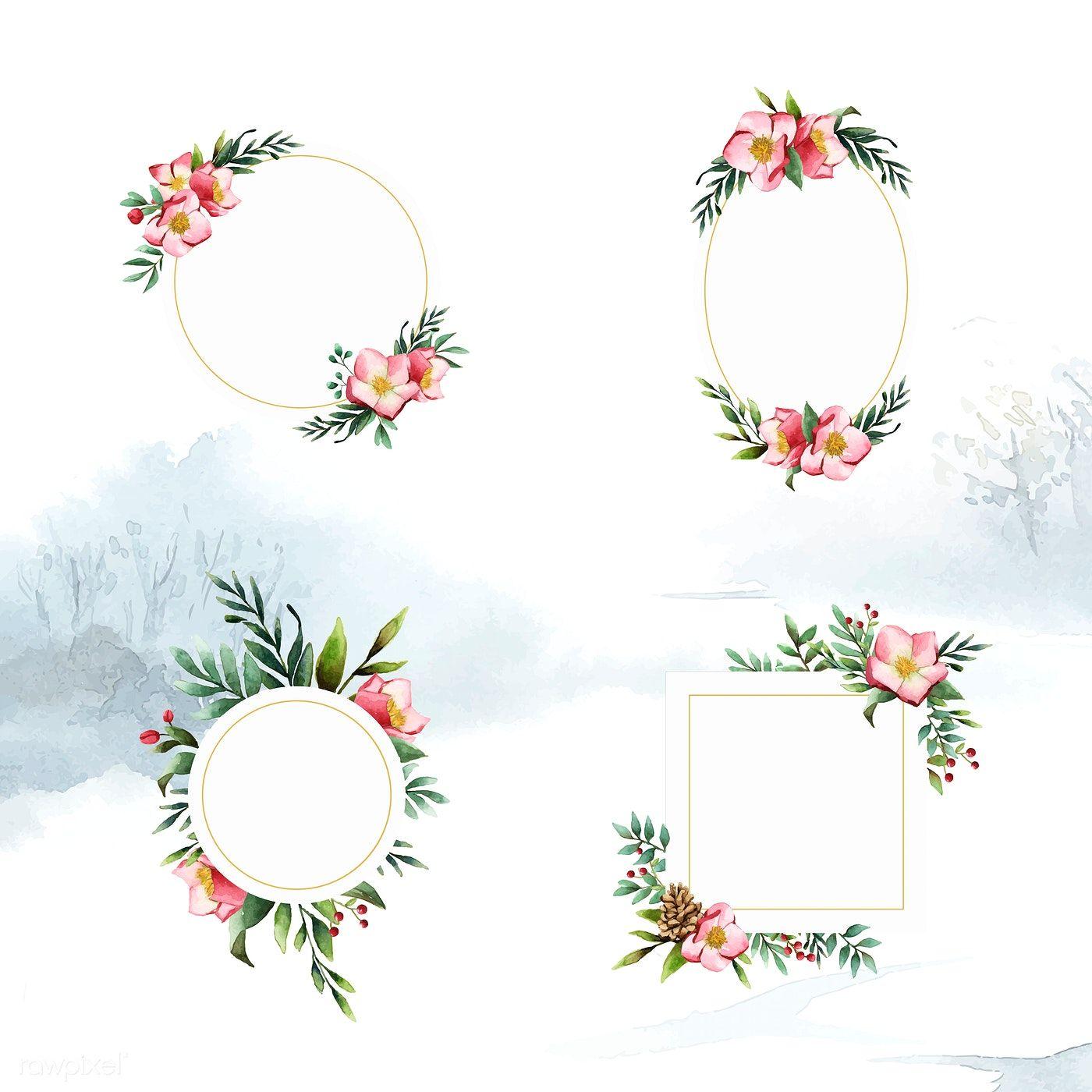 Set of Hellebore flower frames painted by watercolor