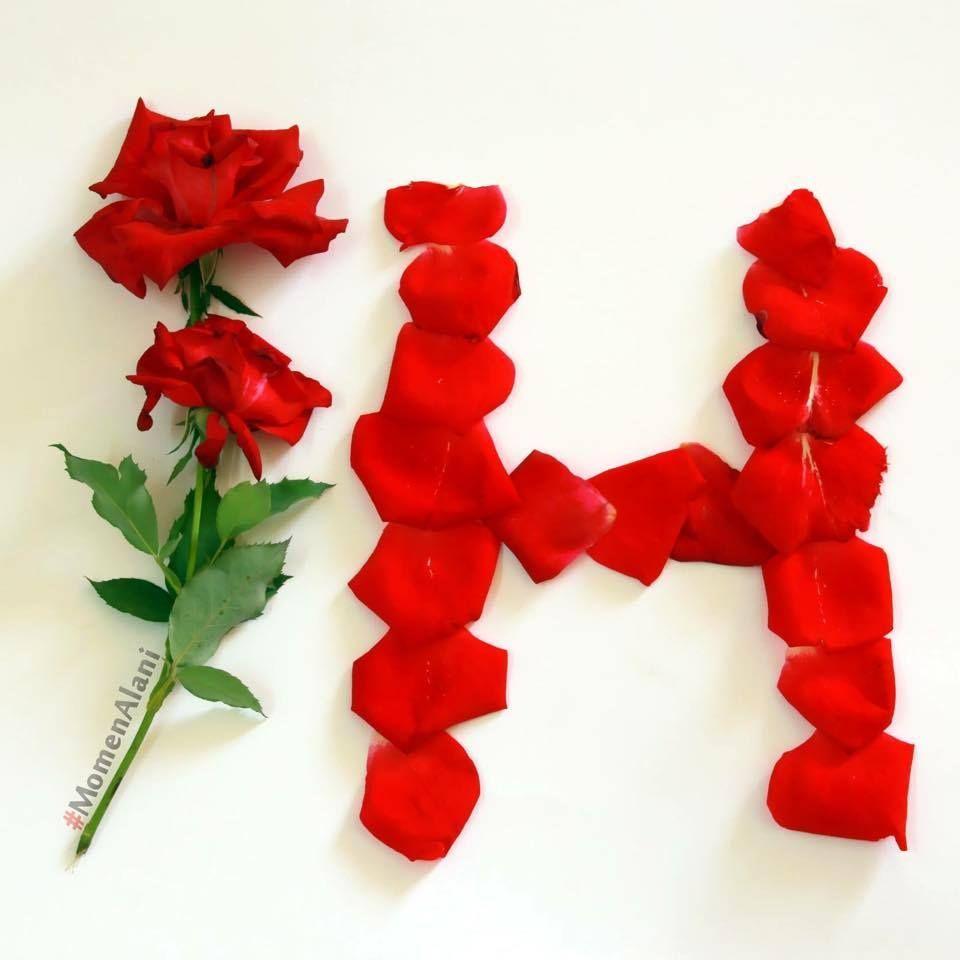 Rose Name Ashwaq Love Flower Letters Floral Letters Letter A Crafts