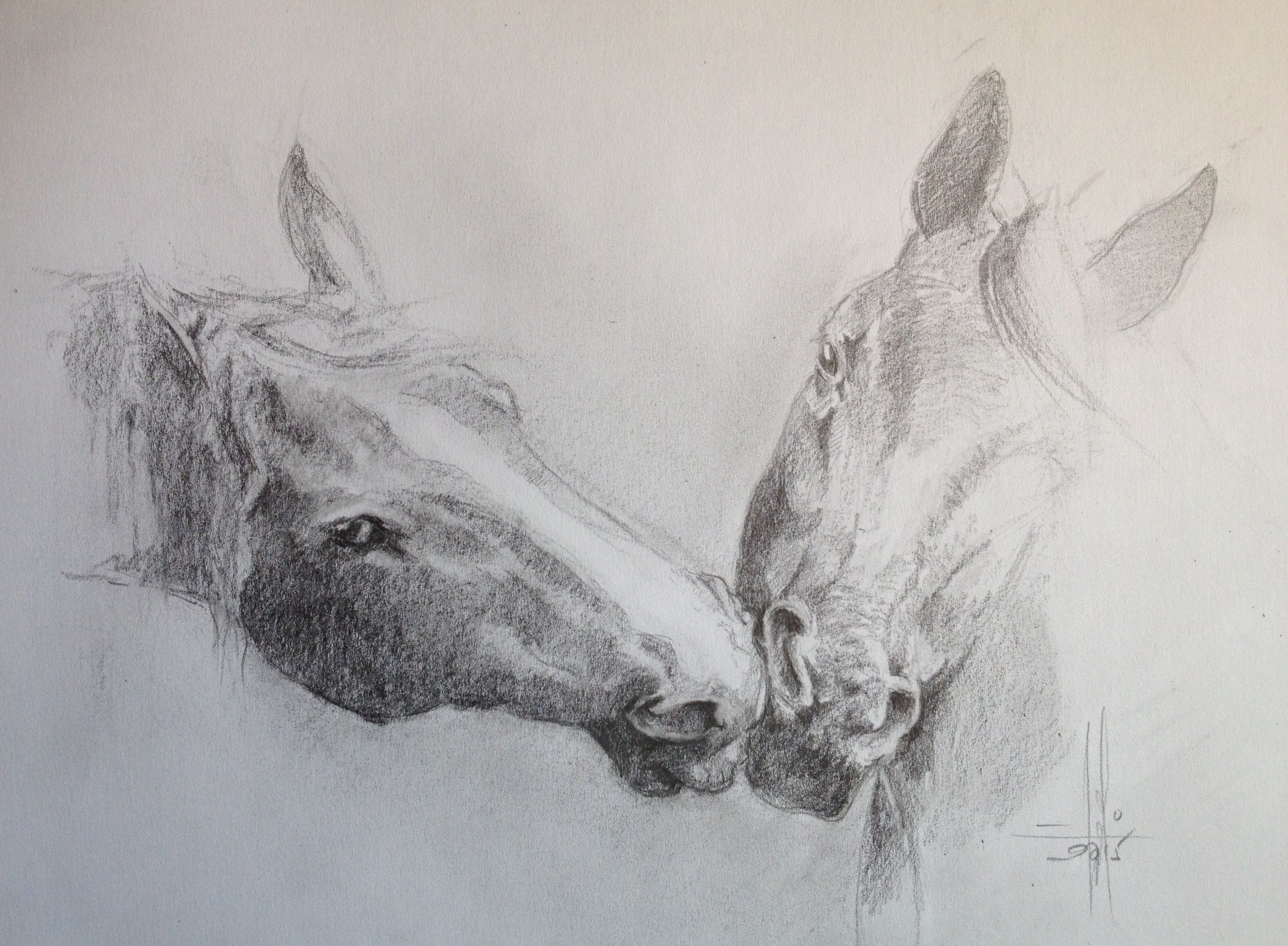 Dibujo a lapiz caballos  Dibujos y Pasteles mios  Pinterest