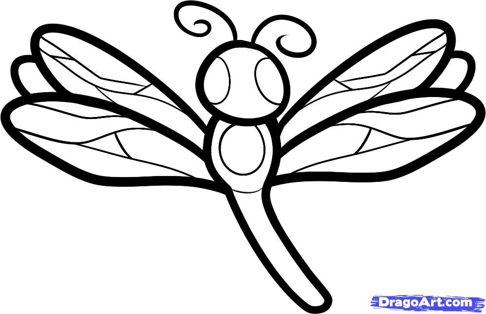 How to draw a dragonfly for kids step by step animals for kids