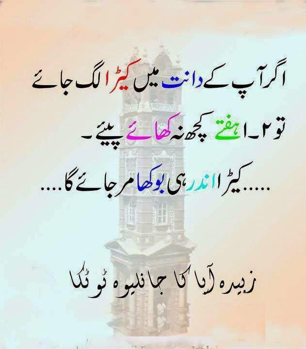 Urdu Latifay Zubaida Aapa K Shugli Tutake Zubaida Aapa Kay Dan