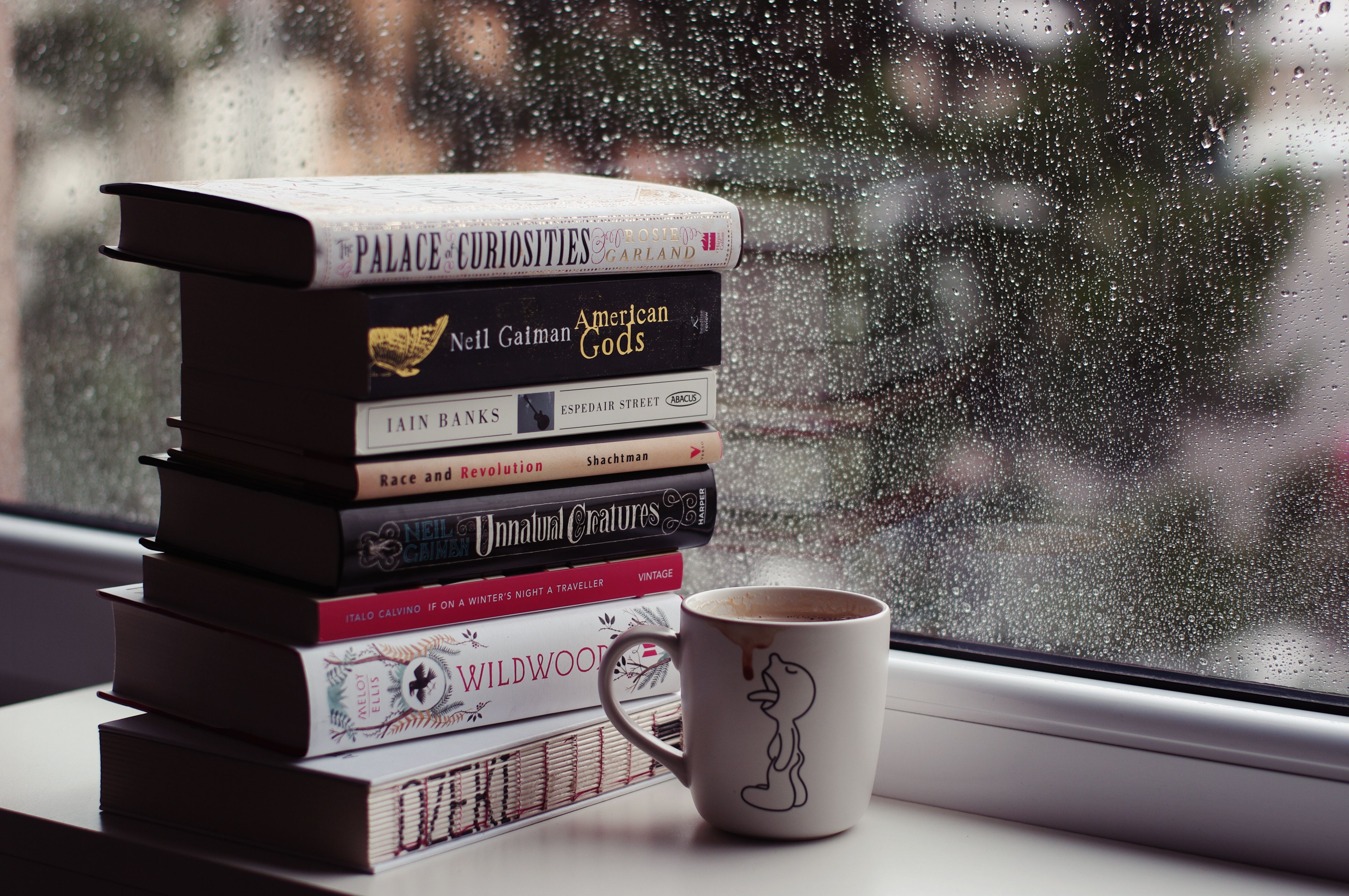 Rainy day, coffee, and a book paradise in 2020 Rain