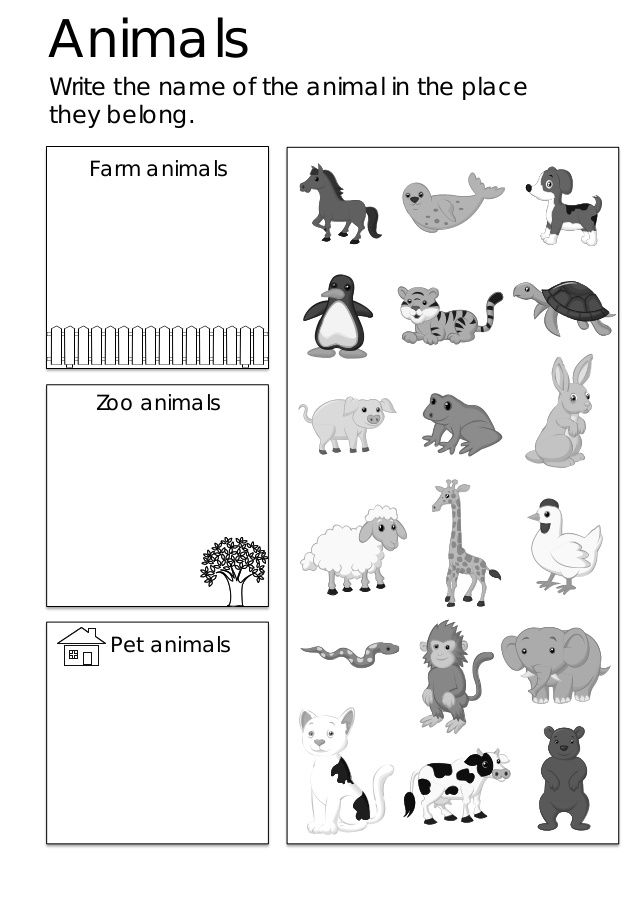 Esl worksheets and activities for kids also languages pinterest rh