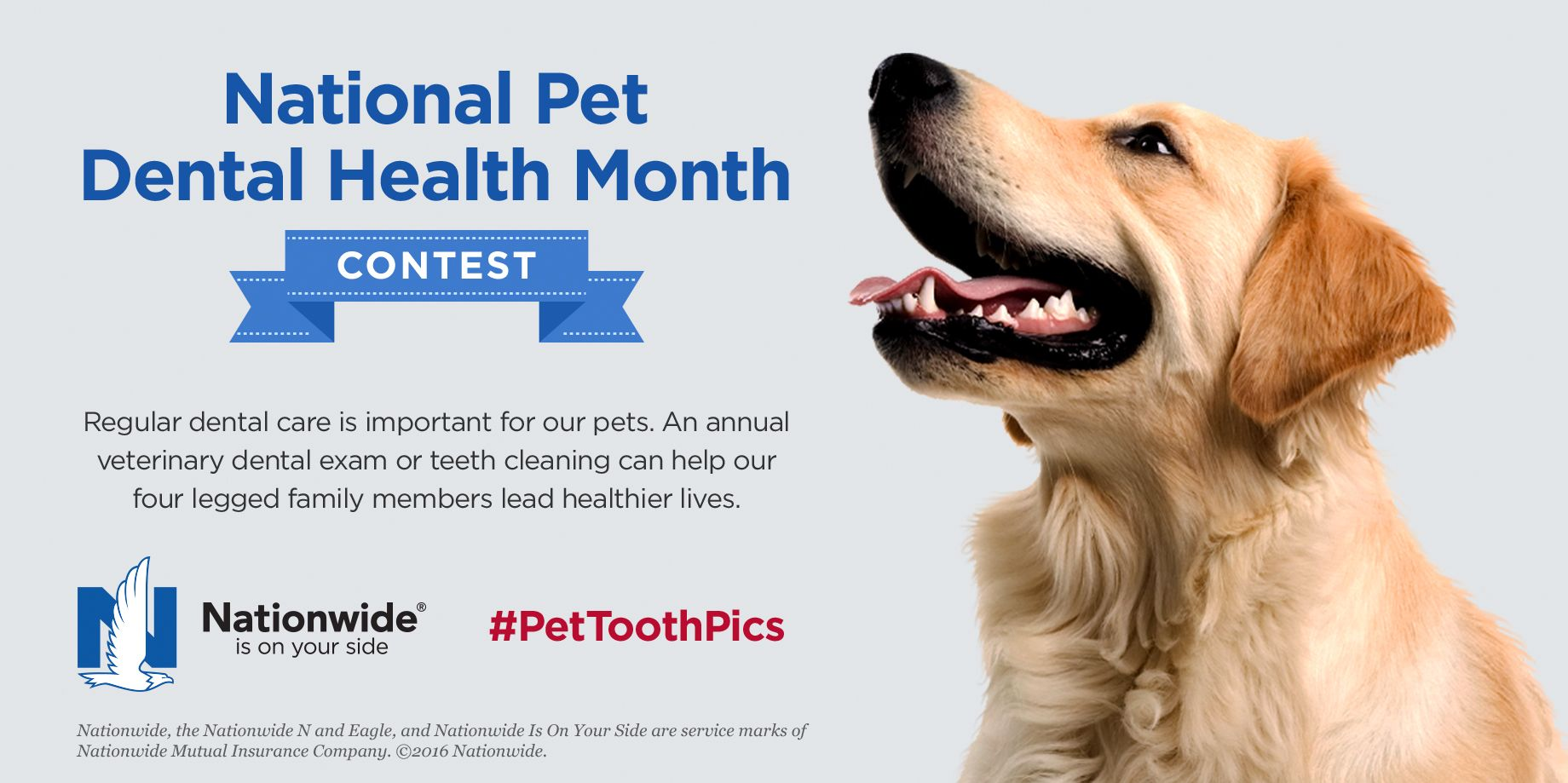 February is National Pet Dental Health Month. Show us your