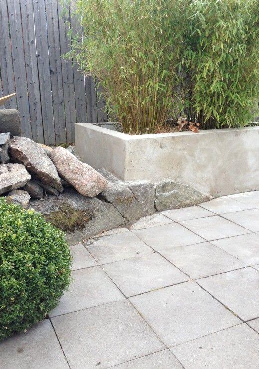 Trädgård trädgård betong : växtbädd betong platsgjuten | TrädgÃ¥rd | Pinterest | Decor and ...