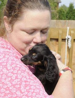 Firefly With His Foster Mom Firefly Was Rescued From The Puppy Mill In Parkersburg Wv Where 1 000 Dogs Mostly Dachsh Dachshund Love Puppy Mills Foster Mom