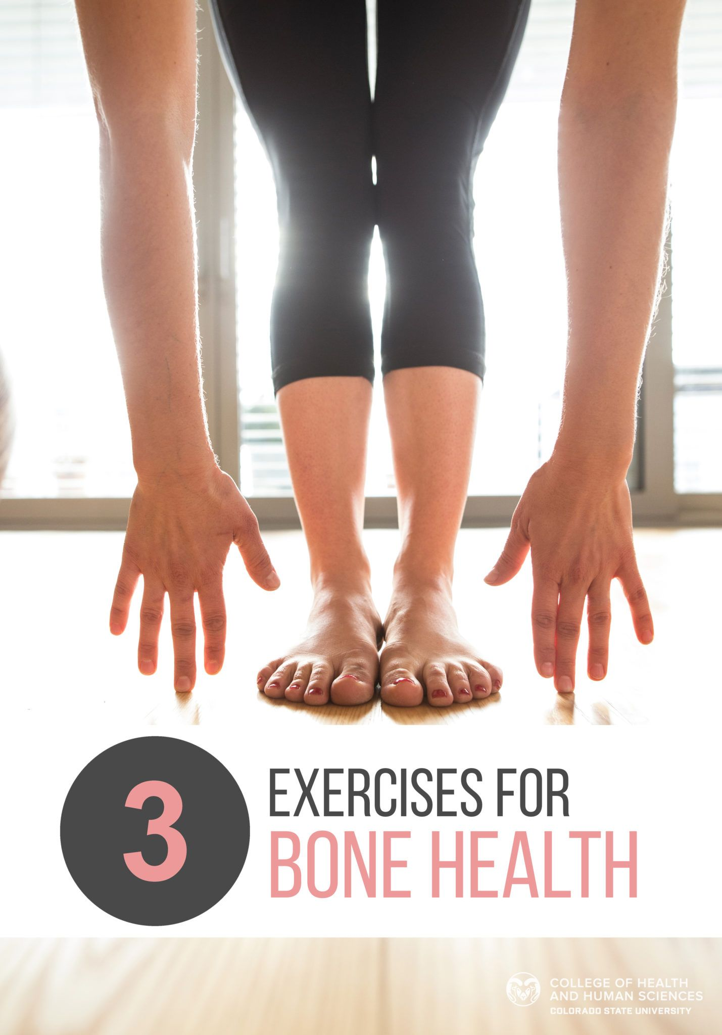 25+ Heel drop exercise for osteoporosis information