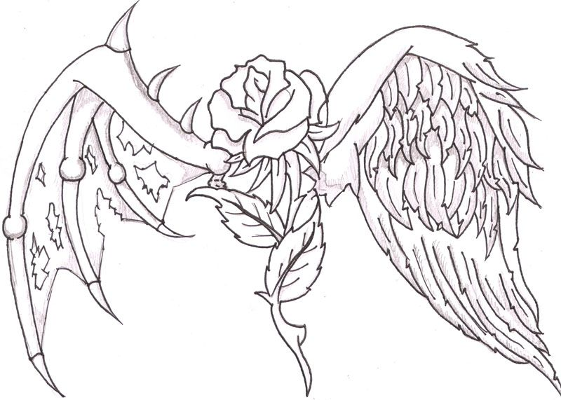 A heart with wings and a rose 800 571 ideas for Angel wings coloring pages