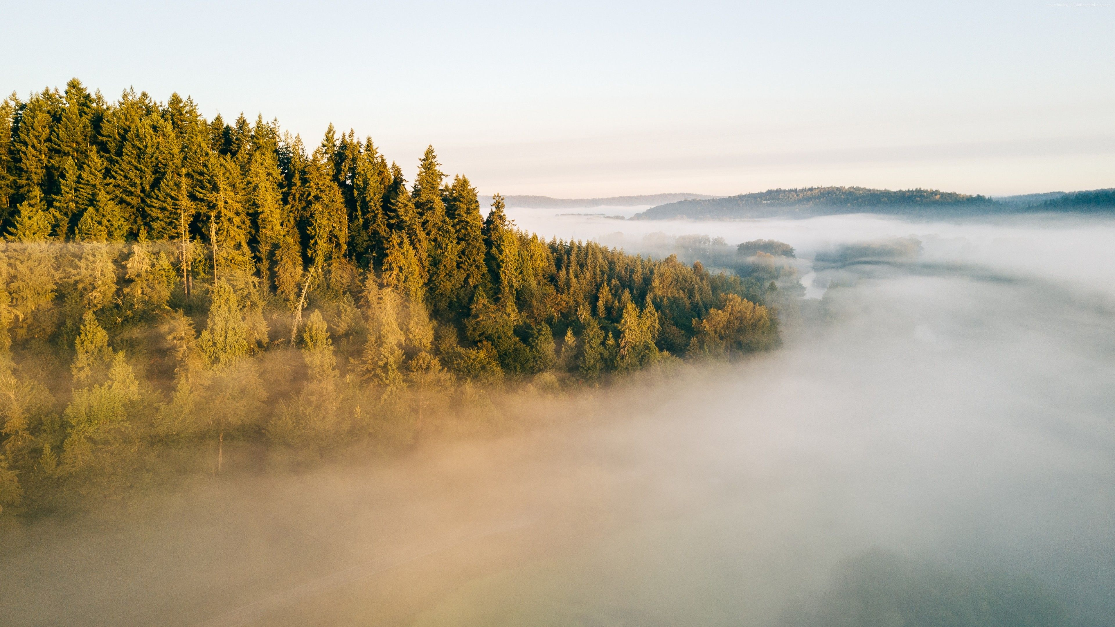 pin by px wall on 4k wallpapers in 2018 pinterest nature