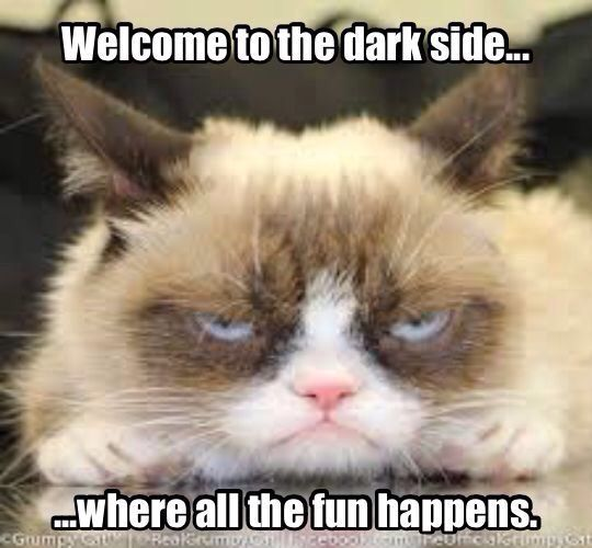 Welcome To The Dark Side Where All The Fun Happens Grumpy Cat Grumpy Cat Humor Grumpy Cat Meme