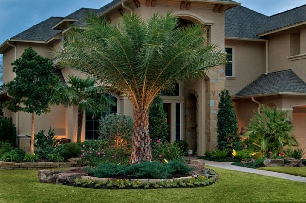 Beautiful designs front yard landscaping ideas with palm for Florida landscape ideas front yard