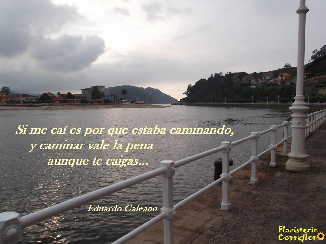 Si me caí es por que estaba caminando, y caminar vale la pena aunque te caigas... Eduardo Galeano