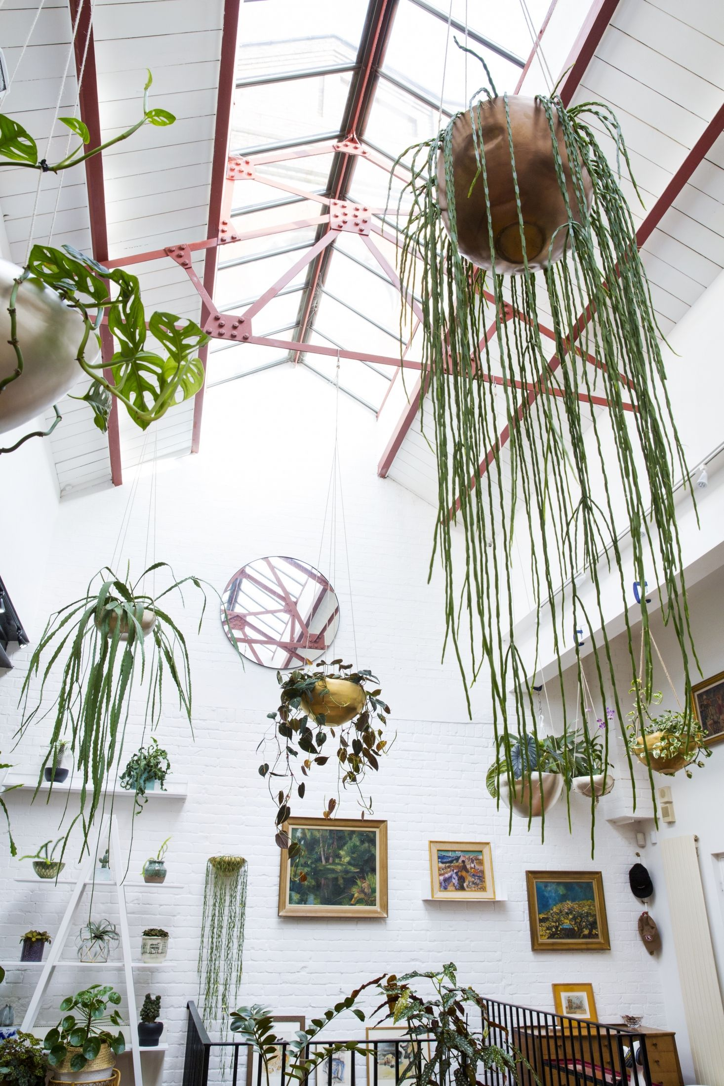 Jamie S Jungle At Home With Houseplants In London Gardenista Houseplants Hanging Plants Decor