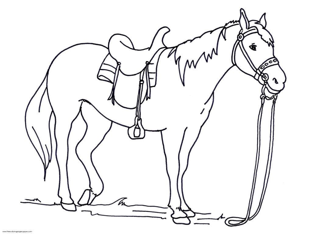 Coloring Rocks In 2020 Horse Coloring Pages Animal Coloring Pages Horse Coloring Books