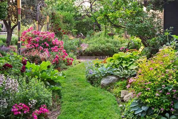 secret garden on urban plot grassy path with perennial beds ...