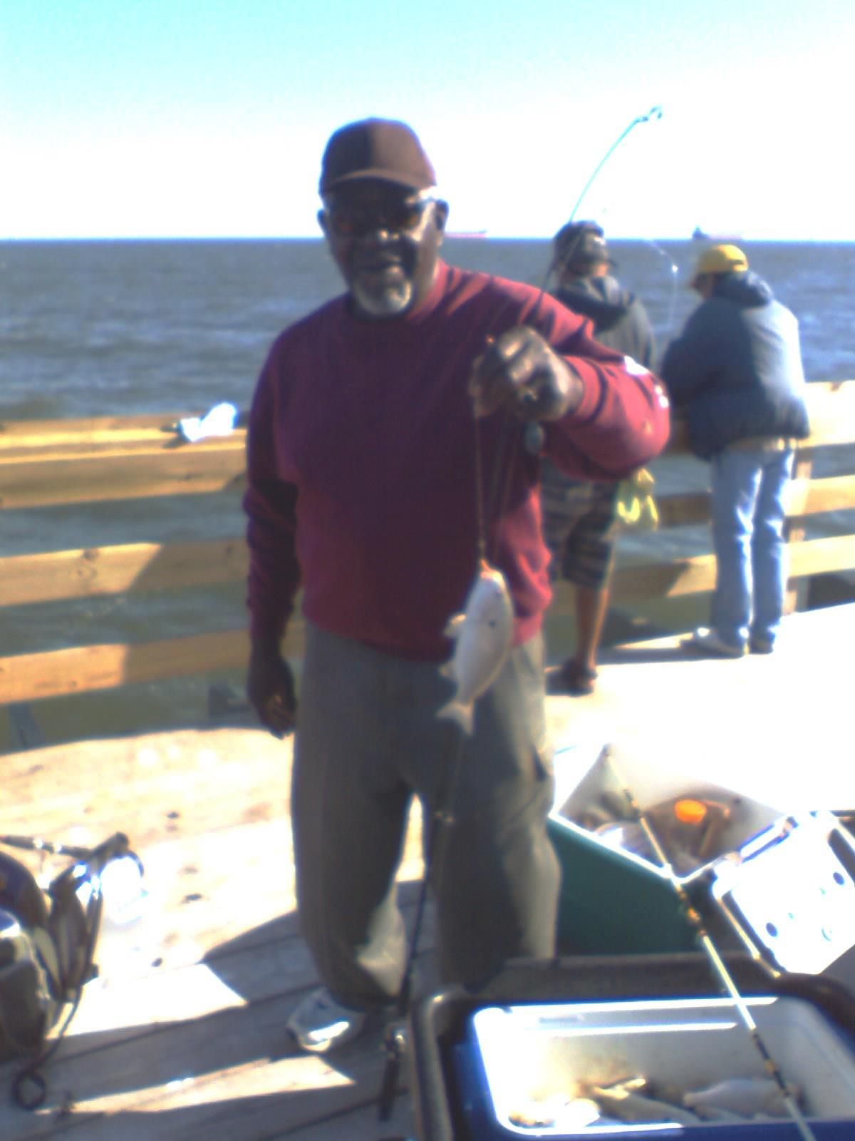 SPOT THE BEST LOCAL FISH TO CATCH Pier fishing, Sport