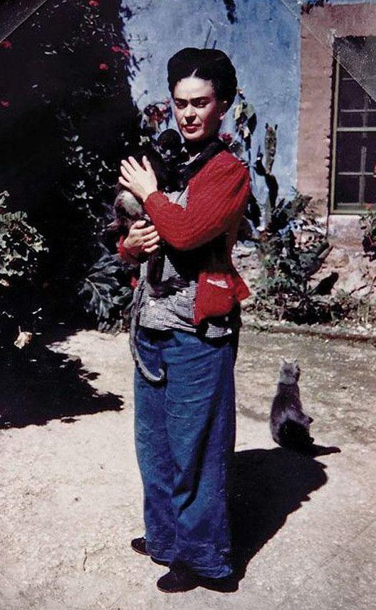 des Artistes Célèbres photographiés avec leurs Chats | Celebrities with cats, Frida kahlo, Cat people