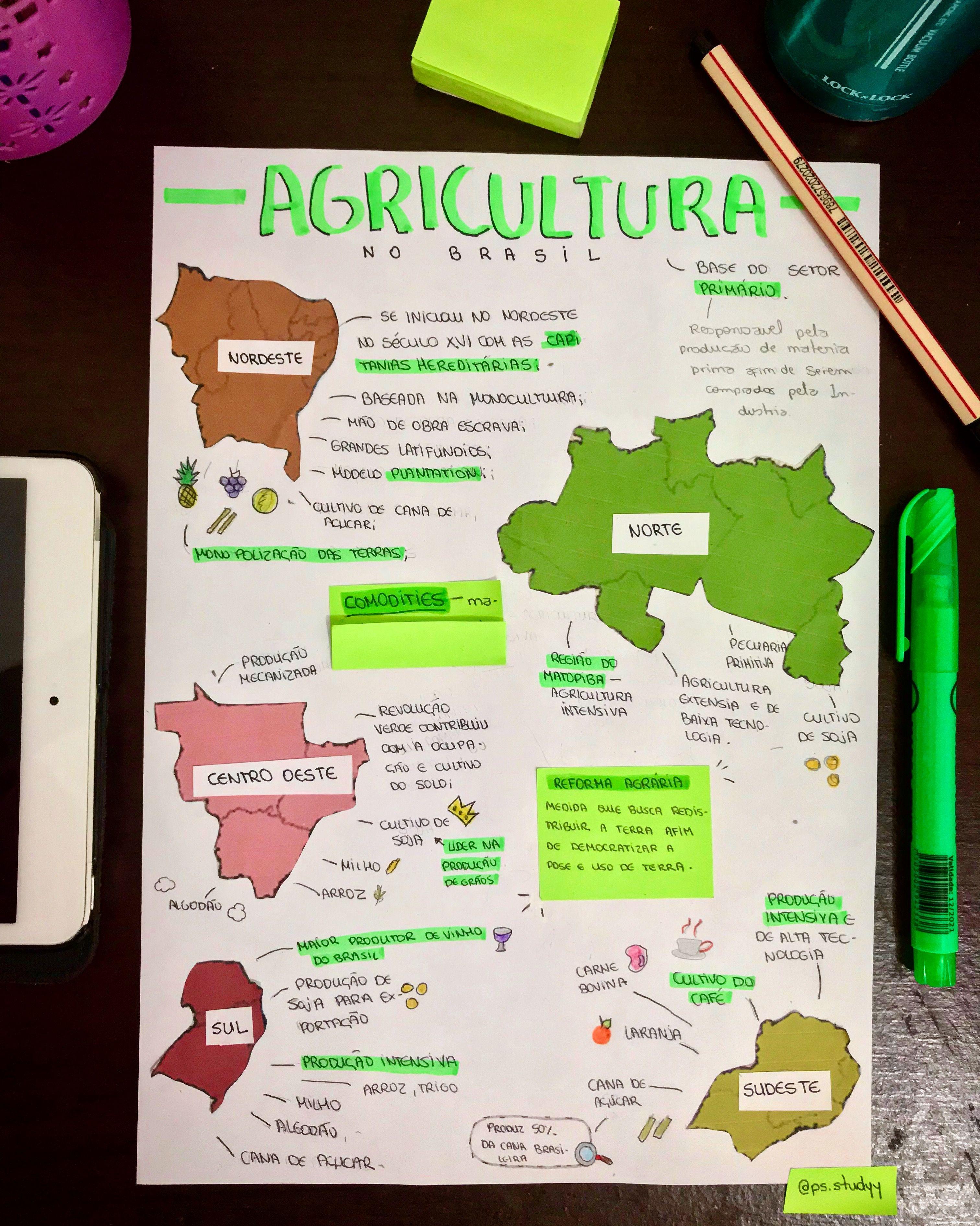 Agricultura no Brasil Mapa mental Agricultura no brasil