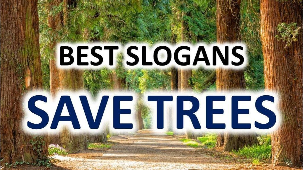 Famous Slogans On Save Trees Tech Inspiring Stories