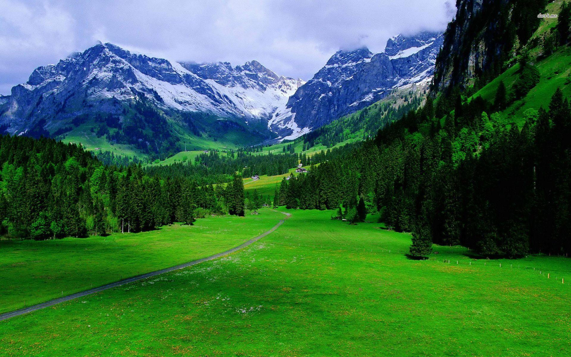 The Alps In Switzerland Nature Wallpaper Alps Beautiful Nature Explore Nature
