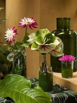W Tej Aranzacji Zamiast Tradycyjnych Wazonow Wykorzystano Sloiki Szklane Naczynia Zostaly Wyscielone Liscmi O Ci Anthurium Flower Anthurium Anthurium Bouquet