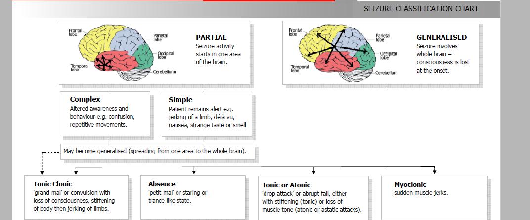 seizure classification epilepsy epilepsy awareness
