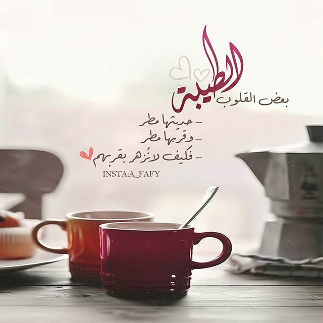 كزخـ المطـر ــات On Instagram الكلمة الطيبة كالوردة الجميلة أينما تضعها تجذب العيون وتأسر القل Quran Quotes Love Beautiful Arabic Words Cool Words