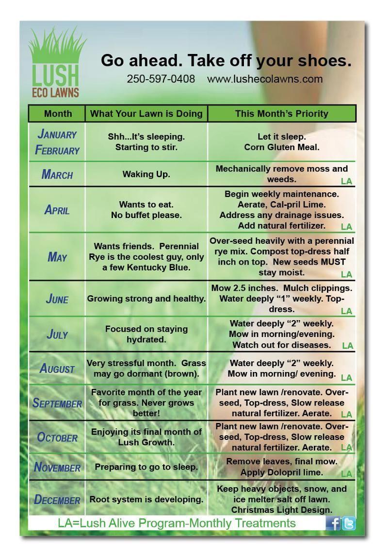 Lawn Care Calendar Www Lushecolawns Com Lawncarelandscaping Landscapingservicescapes Lawn Care Schedule Lawn Care Lawn Care Business