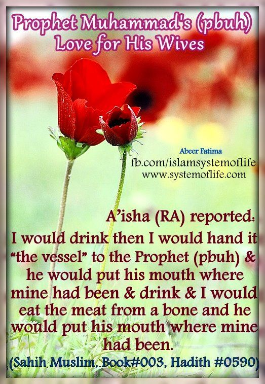 The Prophet Muhammad's (pbuh) Love For His Wives By looking