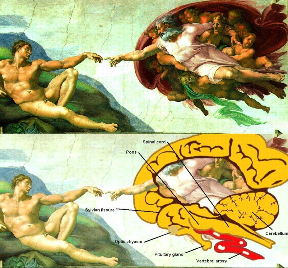 Secerts Creation Adam Sistine Chapel Com Imagens Arte Do