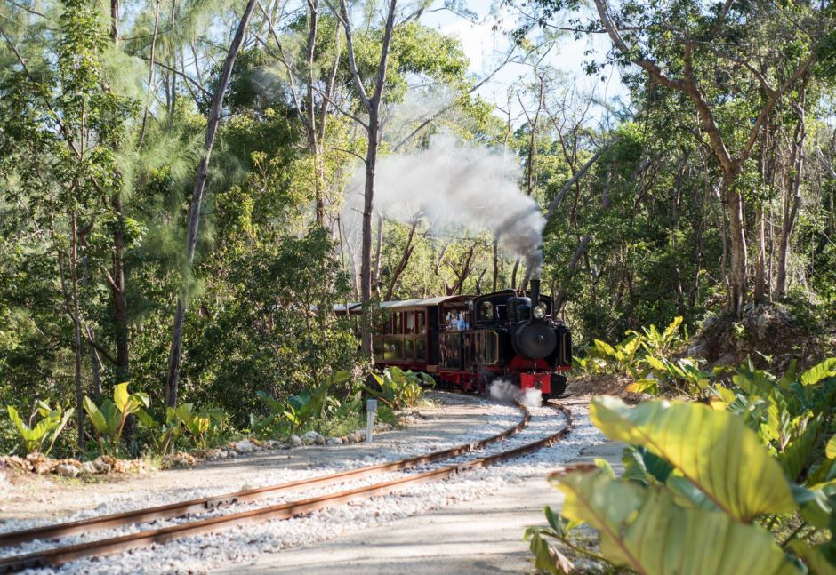 This rum train in Barbados is every rum lover's dream come