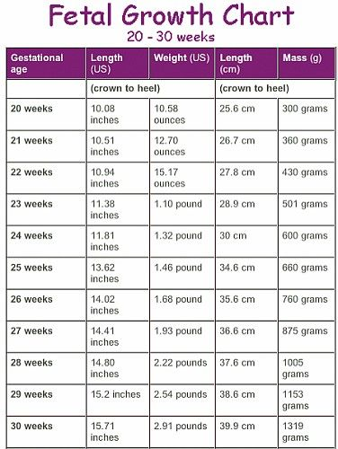 Fetal Growth Chart 20 30 Weeks Baby Pinterest Baby Fetal