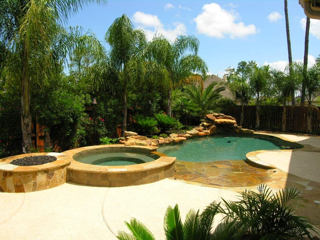 landscaping with queen palms google search landscape