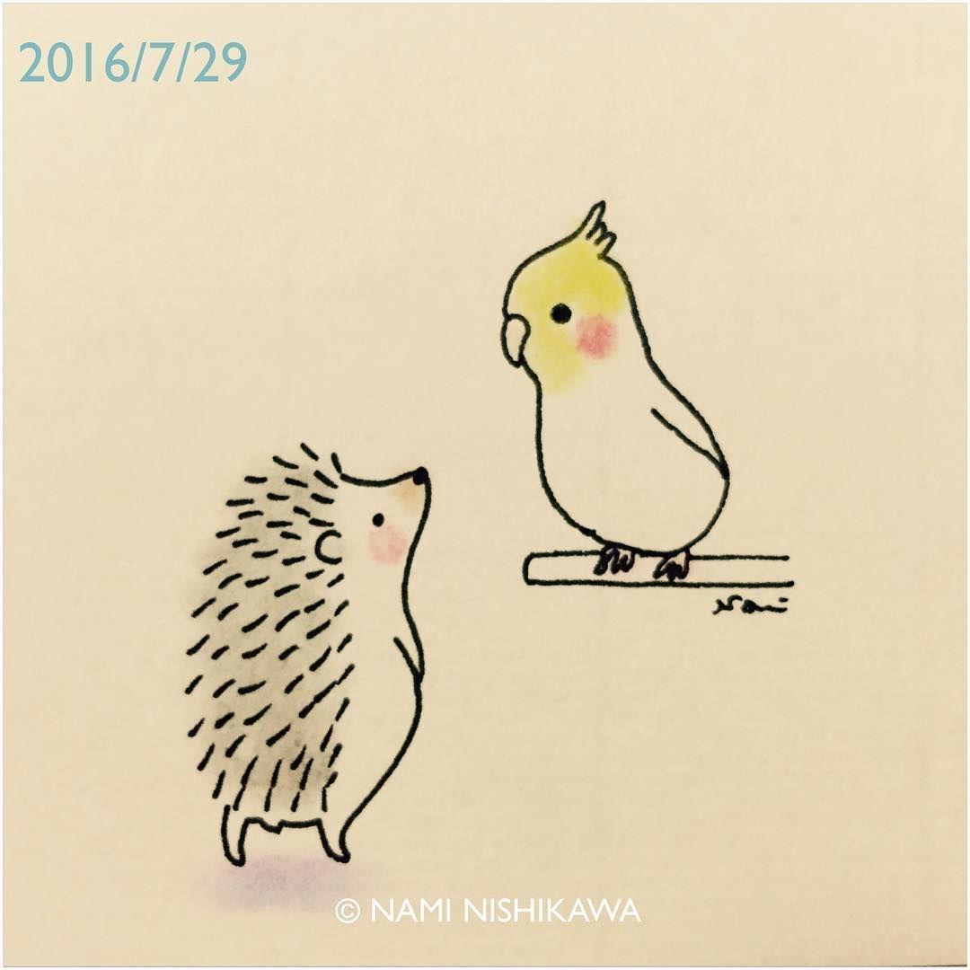 928 #オカメインコ と #ハリネズミ a #cockatiel and a #hedgehog