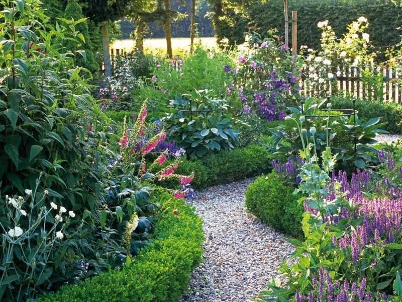 Heckenpflanzen randen den Gartenweg um Garten Pinterest - heckenpflanzen