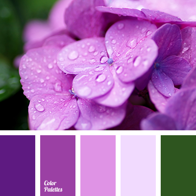A Stunning Bright Palette Rich Shades Of Violet And