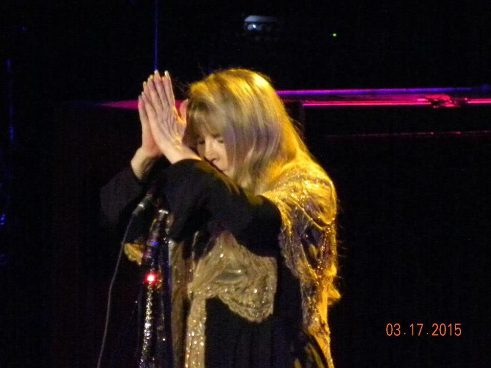 Stevie in Greensboro, NC 3/17/15. Photo taken by Stephanie Whitaker