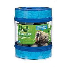 Animal Planet Sea Life Bucket Shark Toy Animal Planet Sea Life