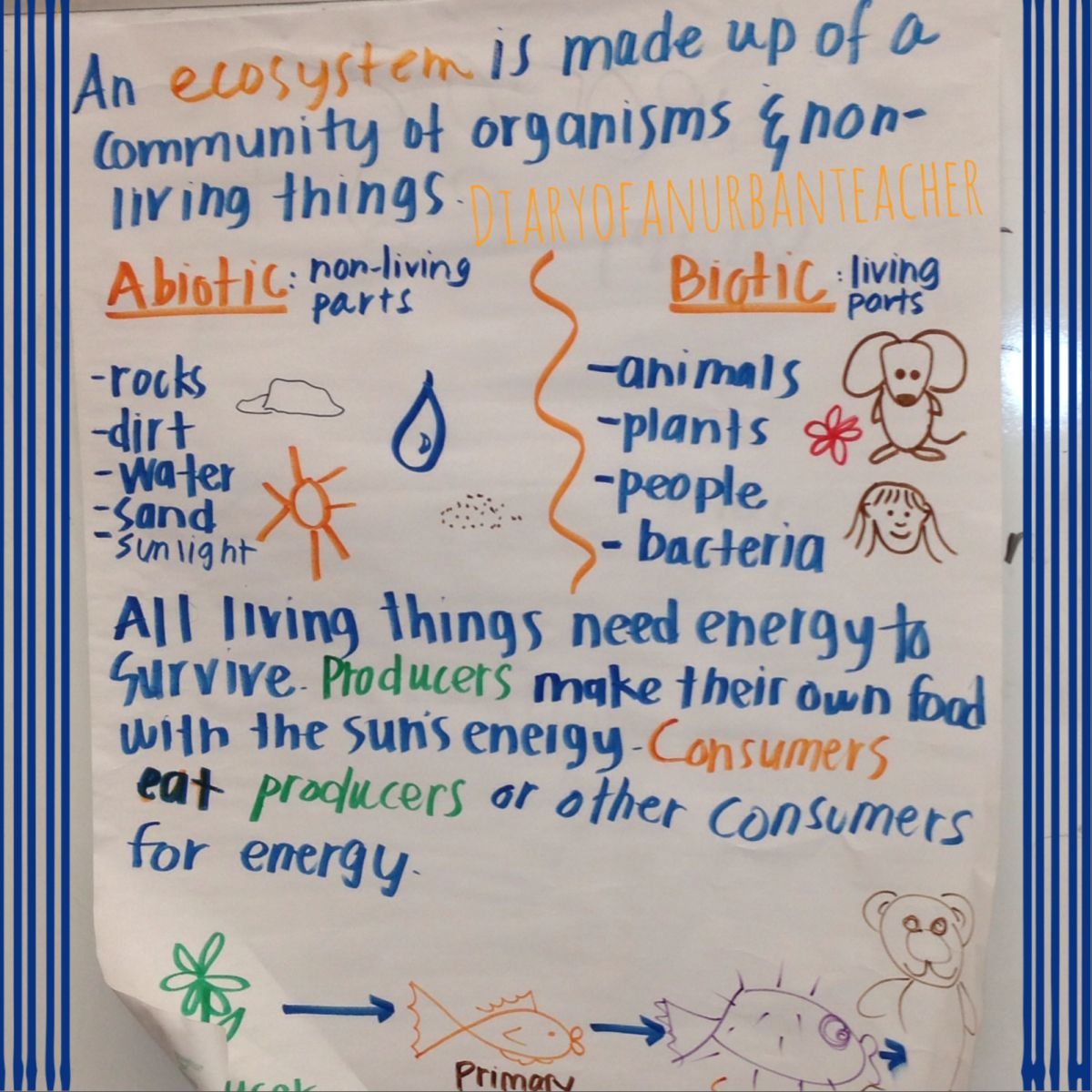 This is a great food chain anchor chart that could easily be science anchor charts sciox Choice Image
